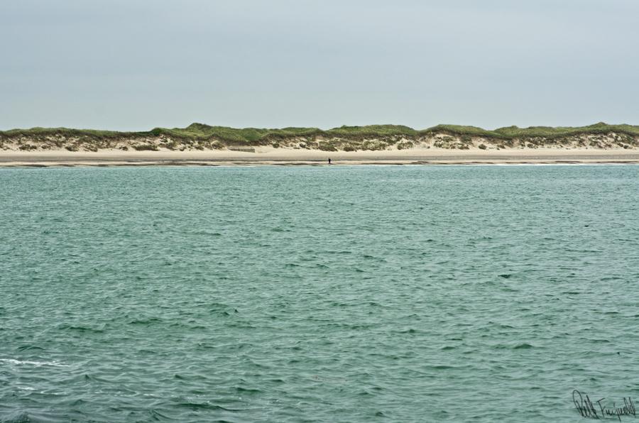Lone samler sten på stranden