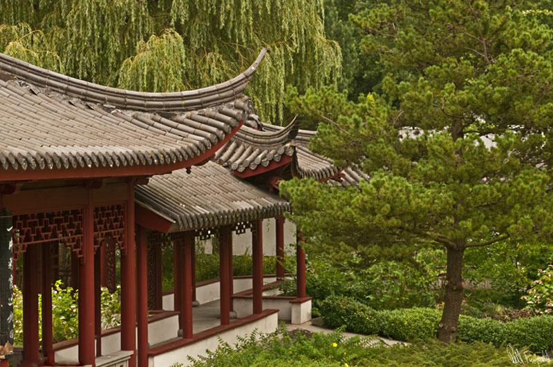 kinesiskehave2-800